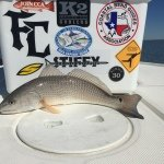 Texas redfish fly fishing rockport