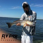 Aransas Bay redfish on the fly