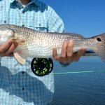 Port Aransas Texas Redfish