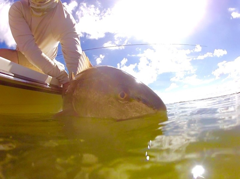 Fly Fishing for Redfish in Texas
