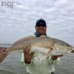 Big Texas redfish on the fly