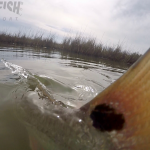 Redfish on the Fly in Rockport, Texas
