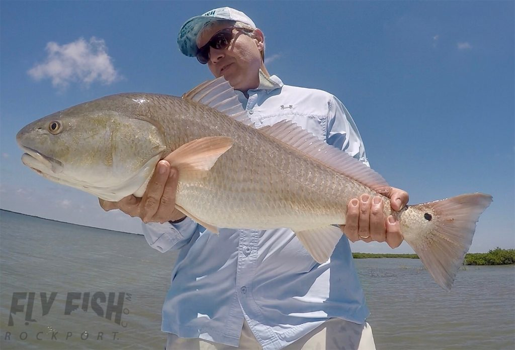 Redfish on the Fly in Texas