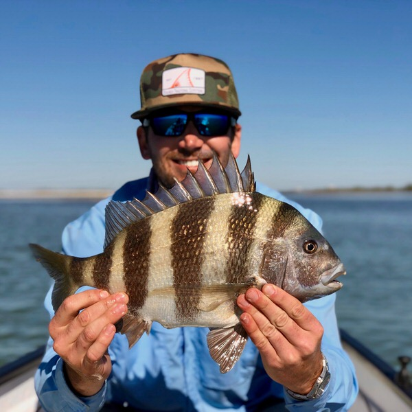 Sheepshead on the Fly
