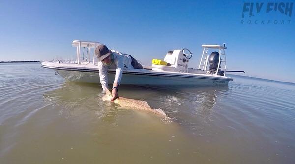 Bull Redfish in Rockport Texas